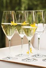 Zwilling J.A. Henckels Predicat S/6 Champagne Glasses 263ml /8.9oz