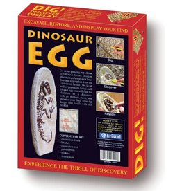 Dinosaur Egg Excavating Kit