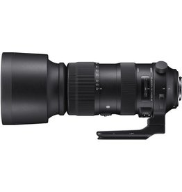 Sigma Sigma 60-600mm f/4.5-6.3 DG OS HSM Sports Lens