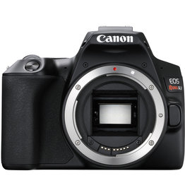 Canon Canon EOS Rebel SL3 - Body