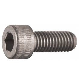 "Steel Socket Cap Screws 1/4-20 x 1/2"" Tele Vue (short) (set of 2)"