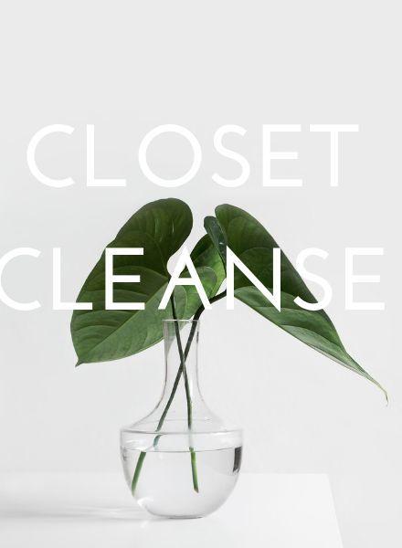 Vincent Closet Cleanse