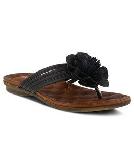 Patrizia Cattara Sandal Black