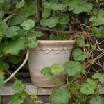 Bergs Potter The Copenhagen Pot