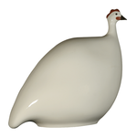 White French Guinea Hen