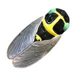 Large Ceramic Cicada
