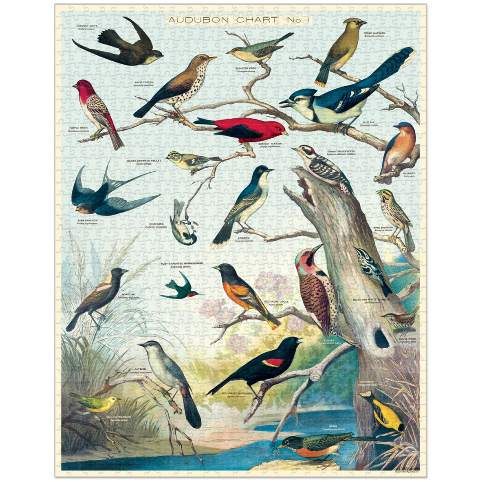 Cavallini & Co. 1000 Pc. Puzzle — Audubon Birds