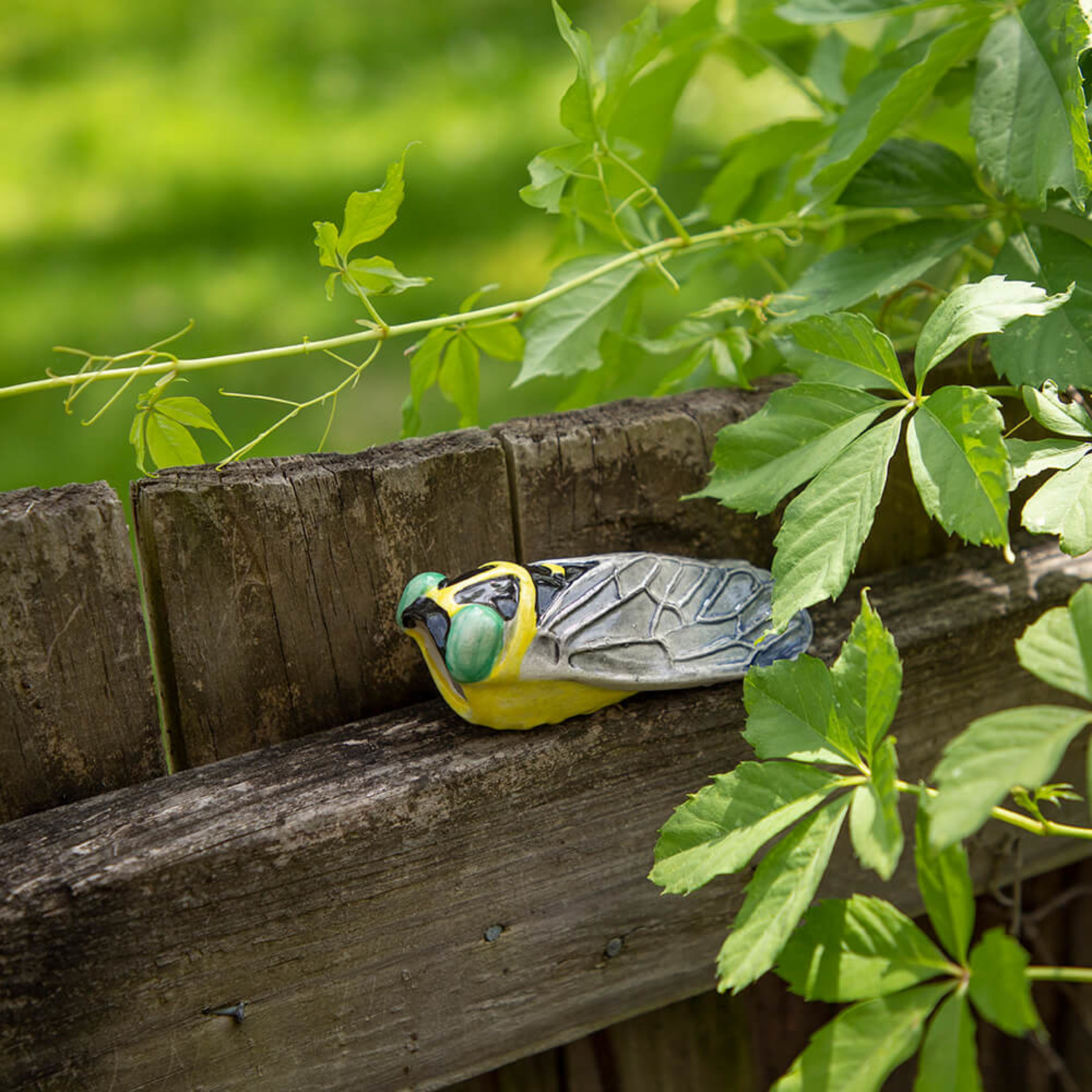 Small Ceramic Cicada — Green Eyes