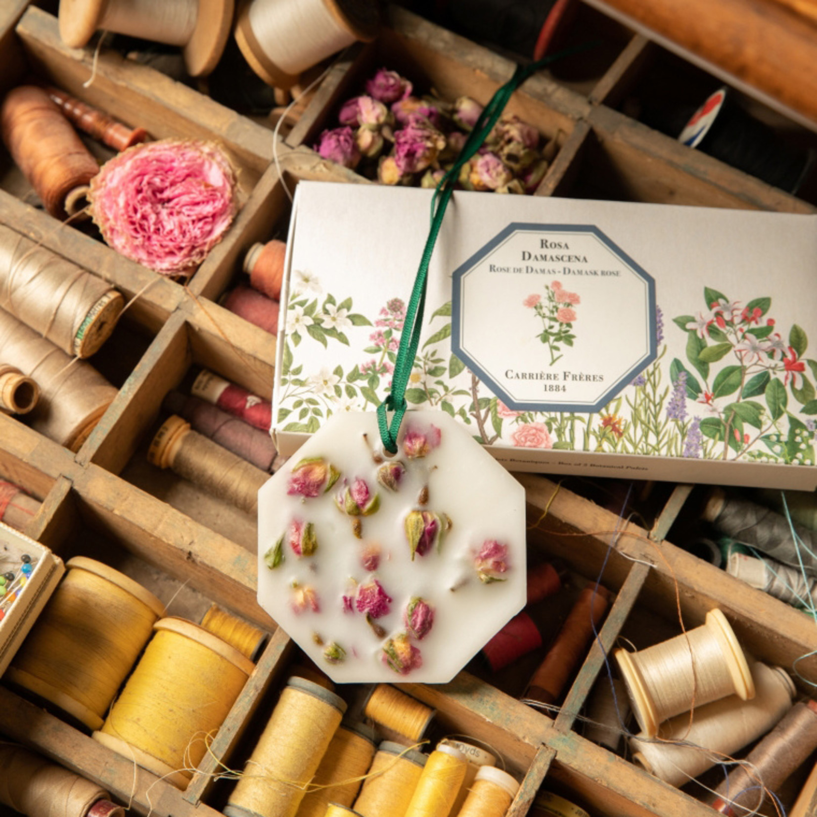 Carriere Freres Botanical Palet