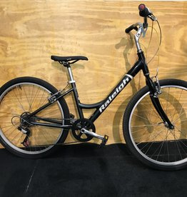 Raleigh Raleigh SCZ 16 Inch Gray