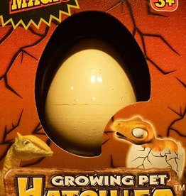 Diamond Visions Inc Growing Pet Hatch 'Em Dino Egg