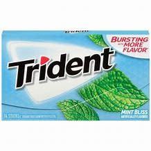 TrailWalker Gear Trident Mint Bliss Gum