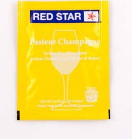 Red Star Red Star Pasteur Blanc Wine Yeast