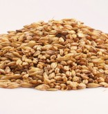 Grain Briess Munich 10L Malt 1 Lb