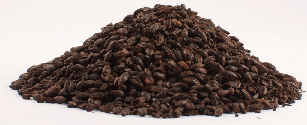 Grain BlackSwaen Coffee Malt (220L) 1 Lb