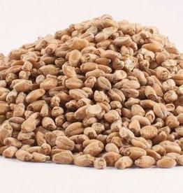 Grain Briess Red Wheat Malt 1 Lb