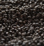 BSG Patagonia Perla Negra (Black Pearl) 340L 1 lb