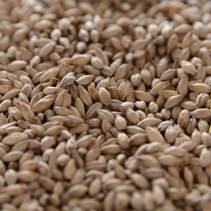 Grain Crisp Gleneagles Maris Otter (Floor Malted) 1 Lb