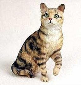 My Cat Small - BROWN SHORTHAIRED TABBY CAT