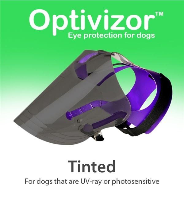 Small Tinted Optivizor™ Regular Snout