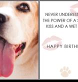 BIRTHDAY - SLOPPY KISSES