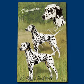 Ball Point Pen Dalmatian