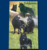 Ball Point Pen Schipperke
