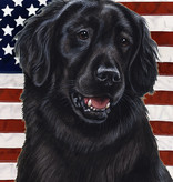 Small Flag Flat Coat Retriever