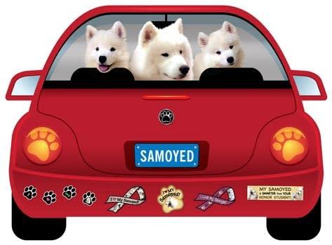 Magnetic Car Samoyed