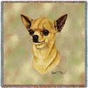 "54"" Lap Square Chihuahua"