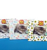 Cat Picture Frame  4x6