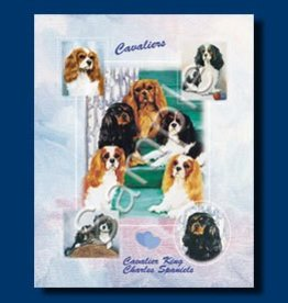 Small Gift Bag Cavalier King Charles Sp