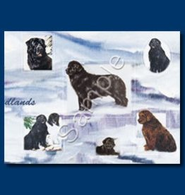 Wrapping Paper Newfoundland