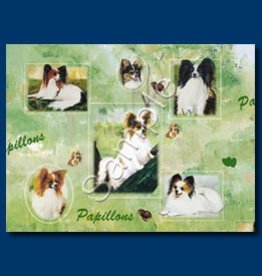 Wrapping Paper Papillion