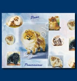 Wrapping Paper Pomeranian