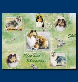 Wrapping Paper Shetland Sheepdog