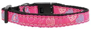 Crazy Hearts Nylon Bright Pink 3/8 wide 6Ft Leash