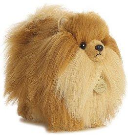 Miyoni Pomeranian -Large