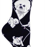 Bichon Frise on Black Socks
