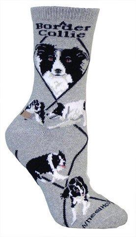 Border Collie - Gray Socks