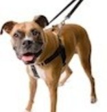 "1""  Large Freedom Training Harness Large-1"" Large (Chest 26"" - 32"")"