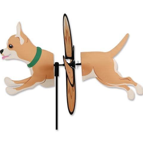 Petite Spinner-Chihuahua
