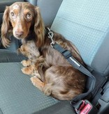 Doggie Design Seat Belt Strap
