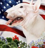 Small Flag Bull Terrier