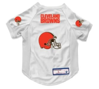 Browns Jersey-Large
