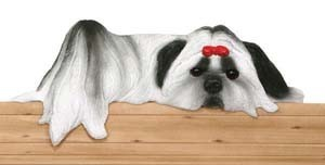 Door Topper Shih Tzu