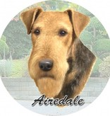Absorbent Car Coaster - Airedale