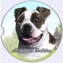 Absorbent Car Coaster - American Bulldog