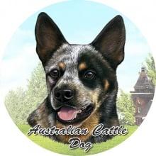 Absorbent Car Coaster - Australian Cattle Dog