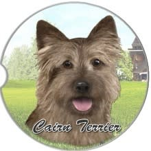 Absorbent Car Coaster - Cairn Terrier